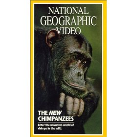 New Chimpanzees_